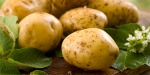 benefícios das batatas para a saúde