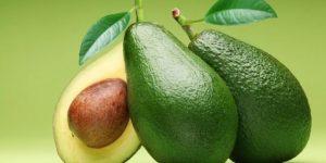 Estudos confirmam benefícios do abacate